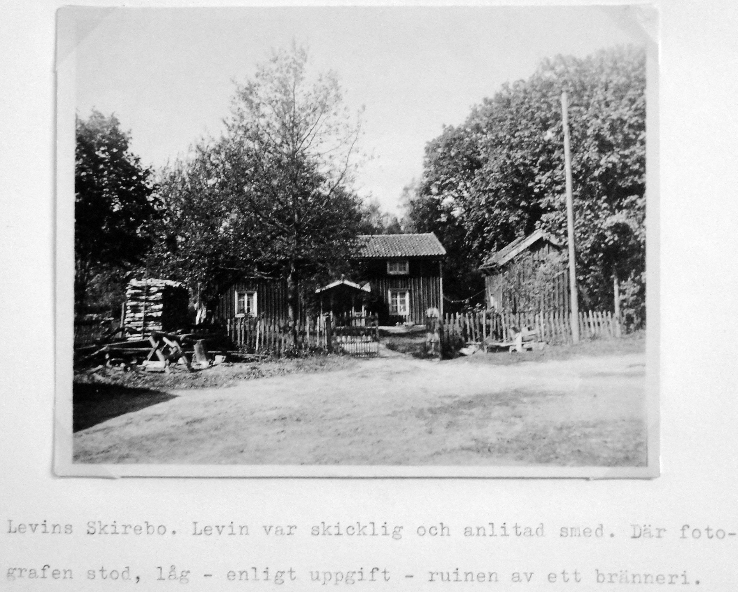 Levins i Skirebo